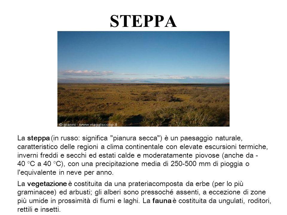 STEPPA La steppa (in russo: significa
