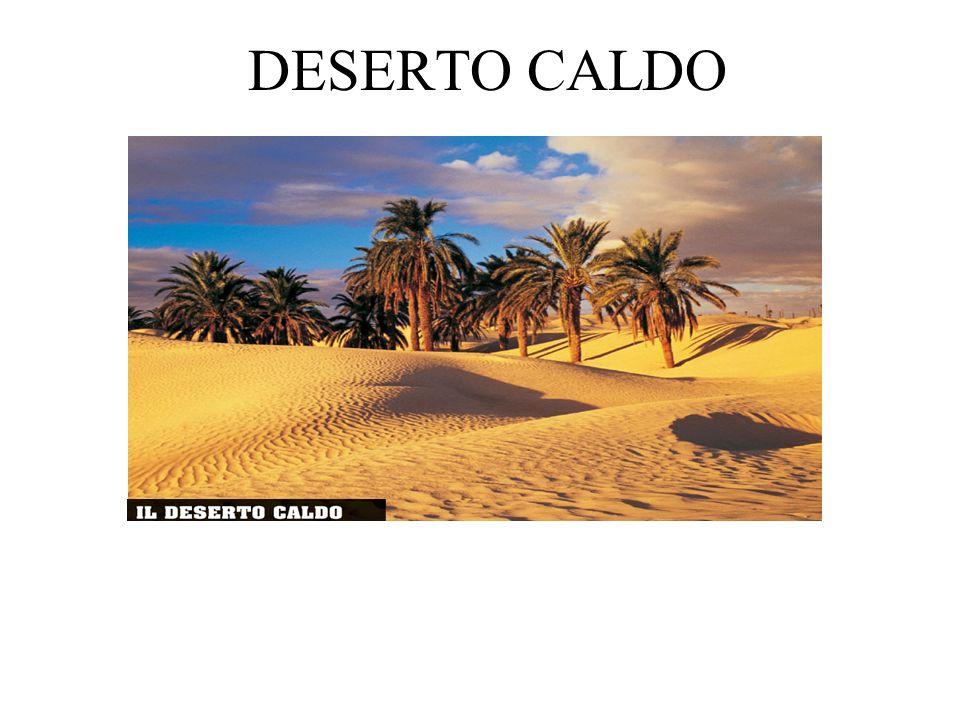 DESERTO FREDDO