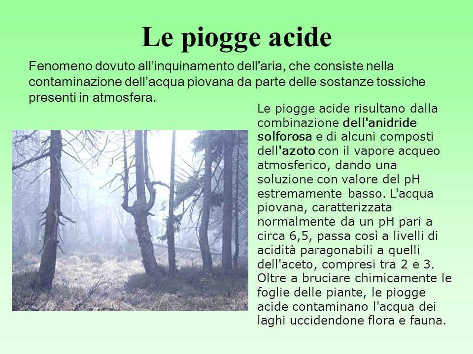 Le piogge acide Fenomeno dovuto allinquinamento dell aria, che consiste nella contaminazione dellacqua piovana da parte delle sostanze tossiche presenti in atmosfera.