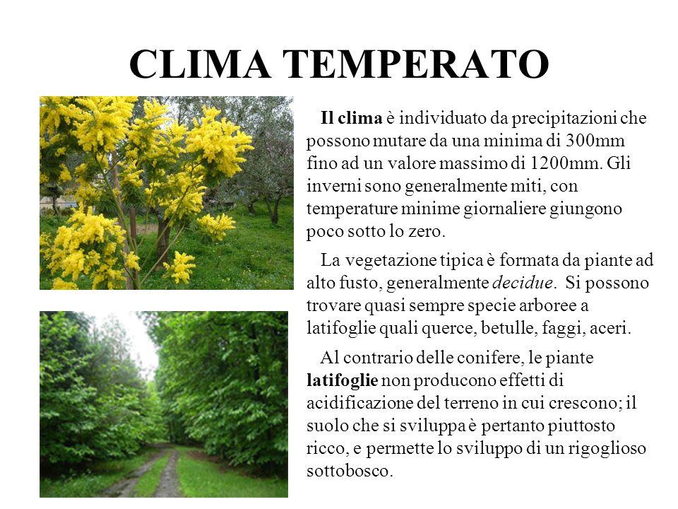 CLIMA TEMPERATO Il clima è individuato da precipitazioni che possono mutare da una minima di 300mm fino ad un valore massimo di 1200mm. Gli inverni so