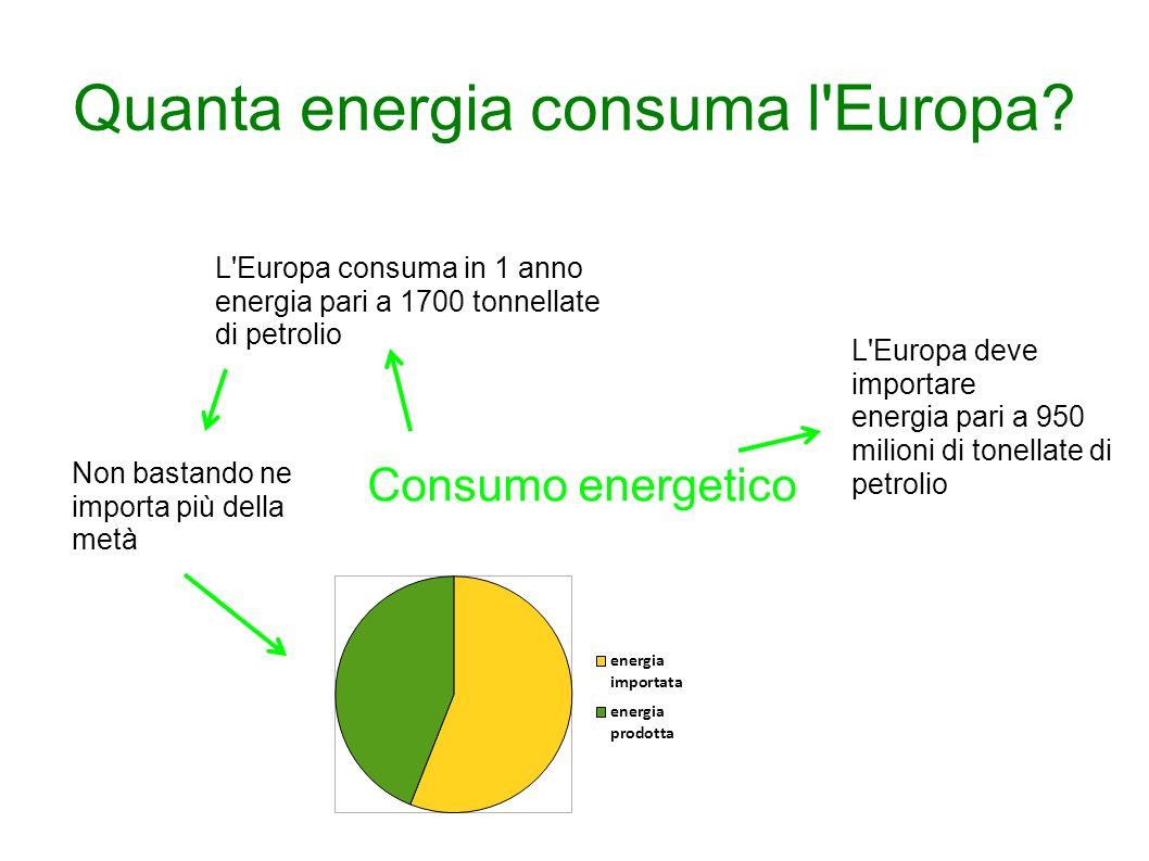 Quanta energia consuma l'Europa? Consumo energetico L'Europa consuma in 1 anno energia pari a 1700 tonnellate di petrolio Non bastando ne importa più