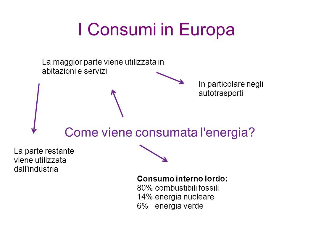 I Consumi in Europa Come viene consumata l'energia? La maggior parte viene utilizzata in abitazioni e servizi In particolare negli autotrasporti La pa