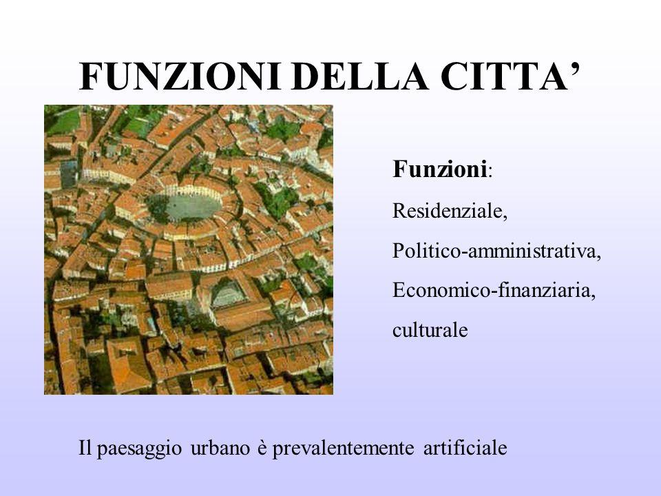 FUNZIONI DELLA CITTA Funzioni : Residenziale, Politico-amministrativa, Economico-finanziaria, culturale Il paesaggio urbano è prevalentemente artificiale
