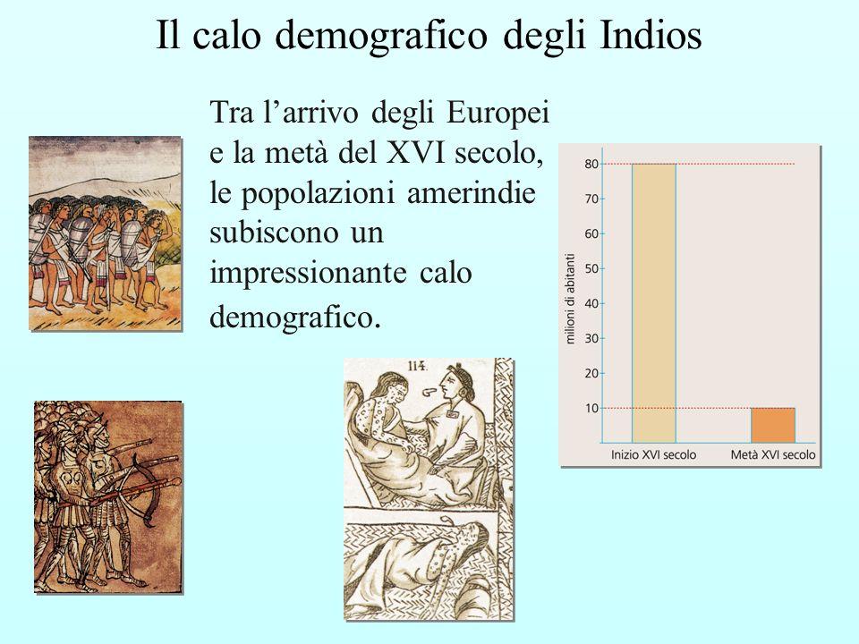 Tra larrivo degli Europei e la metà del XVI secolo, le popolazioni amerindie subiscono un impressionante calo demografico. Il calo demografico degli I