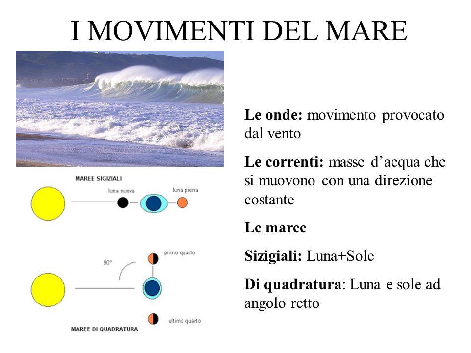I MOVIMENTI DEL MARE Le onde: movimento provocato dal vento Le correnti: masse dacqua che si muovono con una direzione costante Le maree Sizigiali: Lu
