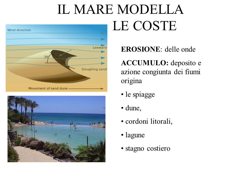 IL MARE MODELLA LE COSTE EROSIONE: delle onde ACCUMULO: deposito e azione congiunta dei fiumi origina le spiagge dune, cordoni litorali, lagune stagno