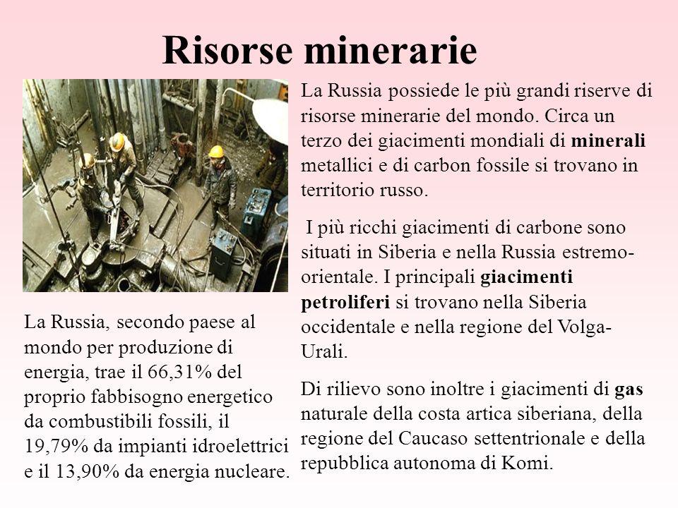 Risorse minerarie La Russia possiede le più grandi riserve di risorse minerarie del mondo.
