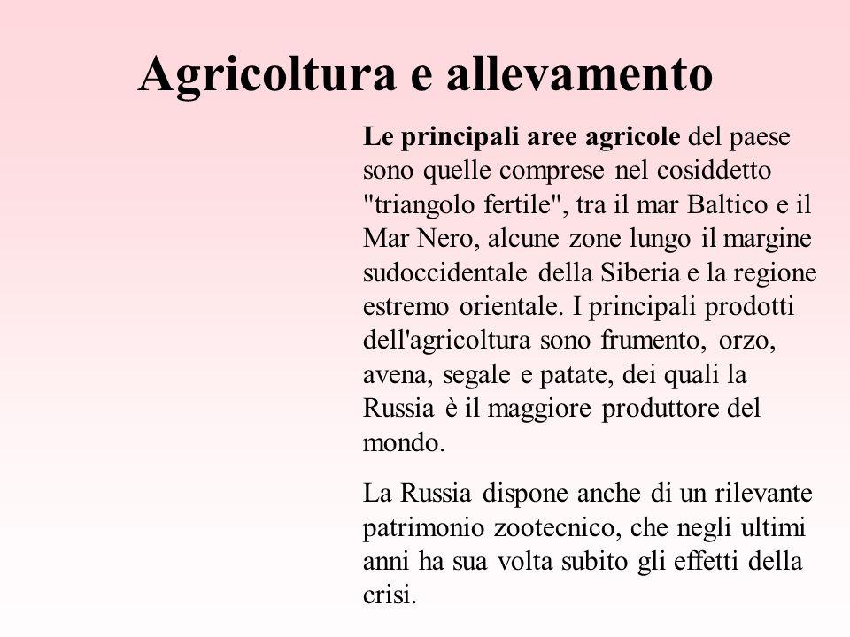 Agricoltura e allevamento Le principali aree agricole del paese sono quelle comprese nel cosiddetto triangolo fertile , tra il mar Baltico e il Mar Nero, alcune zone lungo il margine sudoccidentale della Siberia e la regione estremo orientale.