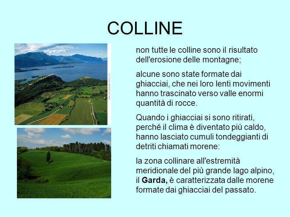 COLLINE non tutte le colline sono il risultato dell'erosione delle montagne; alcune sono state formate dai ghiacciai, che nei loro lenti movimenti han