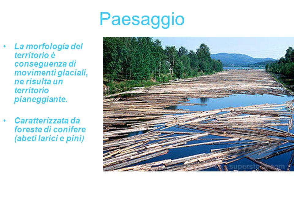 Paesaggio La morfologia del territorio è conseguenza di movimenti glaciali, ne risulta un territorio pianeggiante. Caratterizzata da foreste di conife