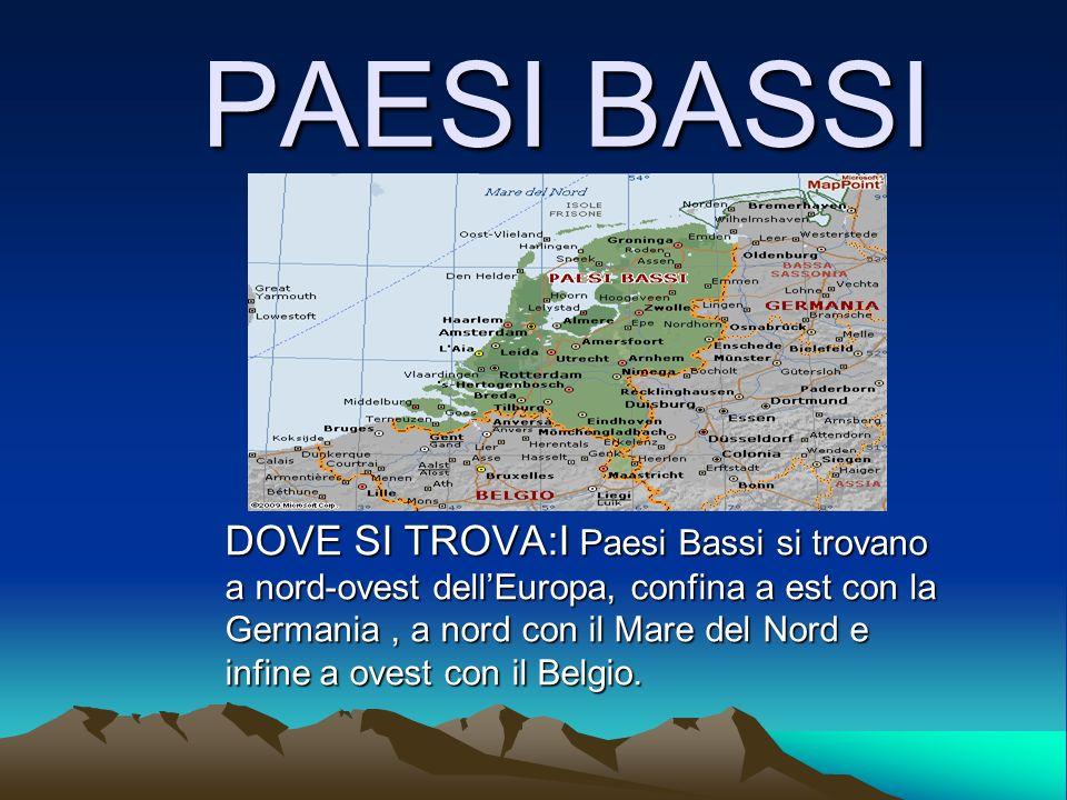 PAESI BASSI DOVE SI TROVA:I Paesi Bassi si trovano a nord-ovest dellEuropa, confina a est con la Germania, a nord con il Mare del Nord e infine a oves