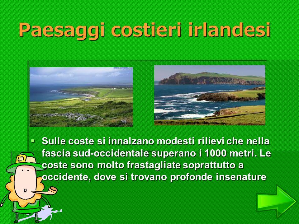 Paesaggi costieri irlandesi Sulle coste si innalzano modesti rilievi che nella fascia sud-occidentale superano i 1000 metri. Le coste sono molto frast