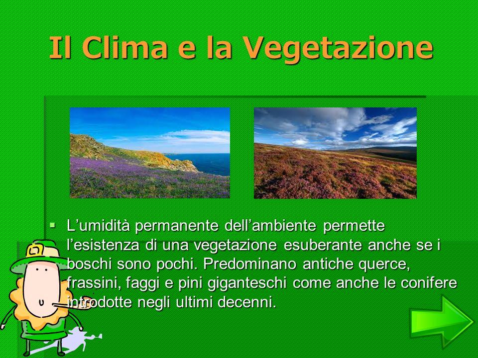 Il Clima e la Vegetazione Il Clima e la Vegetazione Lumidità permanente dellambiente permette lesistenza di una vegetazione esuberante anche se i bosc