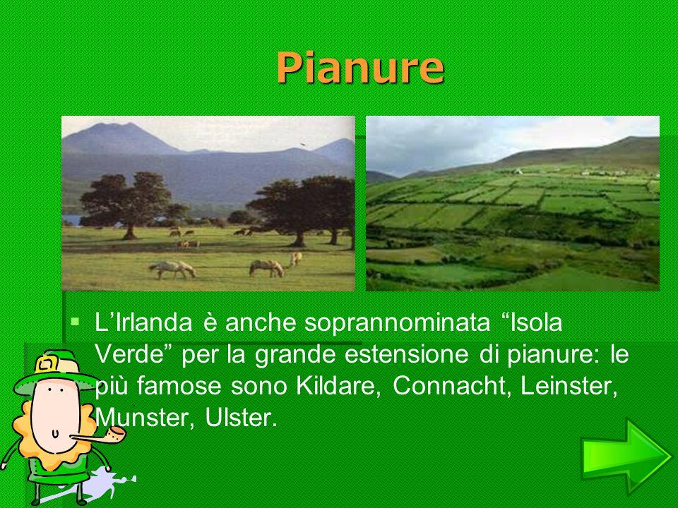 Pianure LIrlanda è anche soprannominata Isola Verde per la grande estensione di pianure: le più famose sono Kildare, Connacht, Leinster, Munster, Ulst