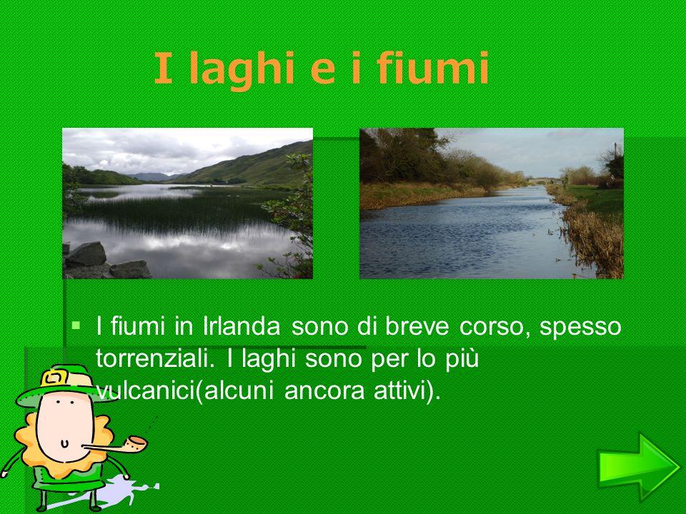 I laghi e i fiumi I fiumi in Irlanda sono di breve corso, spesso torrenziali. I laghi sono per lo più vulcanici(alcuni ancora attivi).