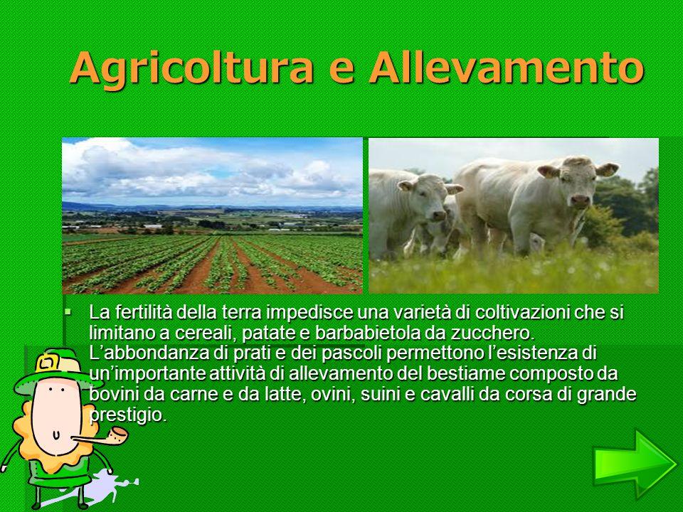 Agricoltura e Allevamento Agricoltura e Allevamento La fertilità della terra impedisce una varietà di coltivazioni che si limitano a cereali, patate e