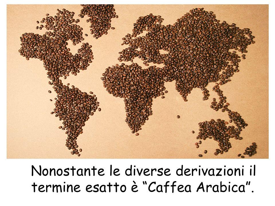 Nonostante le diverse derivazioni il termine esatto è Caffea Arabica.