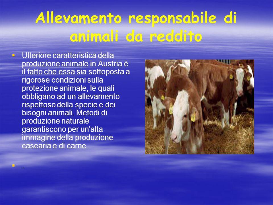 Allevamento responsabile di animali da reddito Ulteriore caratteristica della produzione animale in Austria è il fatto che essa sia sottoposta a rigor