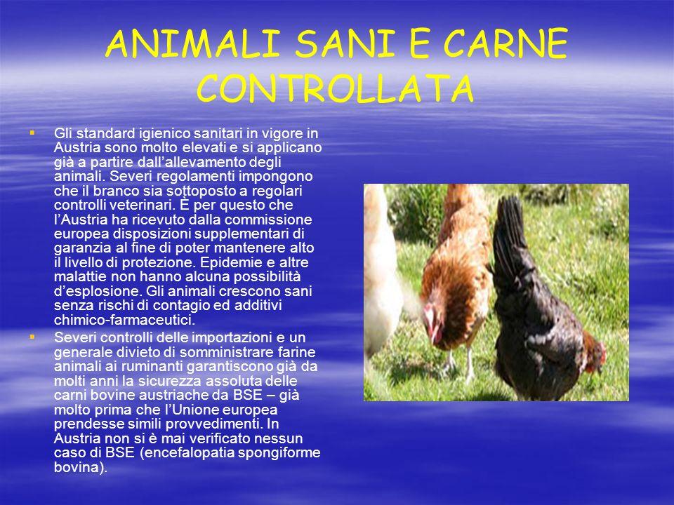 ANIMALI SANI E CARNE CONTROLLATA Gli standard igienico sanitari in vigore in Austria sono molto elevati e si applicano già a partire dallallevamento d