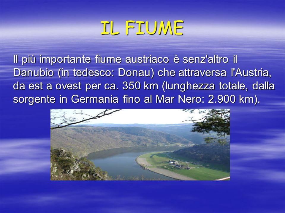 IL FIUME Il più importante fiume austriaco è senz'altro il Danubio (in tedesco: Donau) che attraversa l'Austria, da est a ovest per ca. 350 km (lunghe