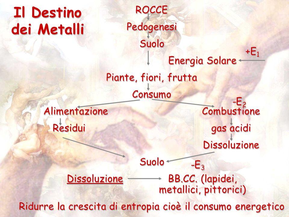 Il Destino dei Metalli ROCCE Pedogenesi Suolo Energia Solare Piante, fiori, frutta Consumo AlimentazioneCombustione Residuigas acidi Dissoluzione Suolo DissoluzioneBB.CC.