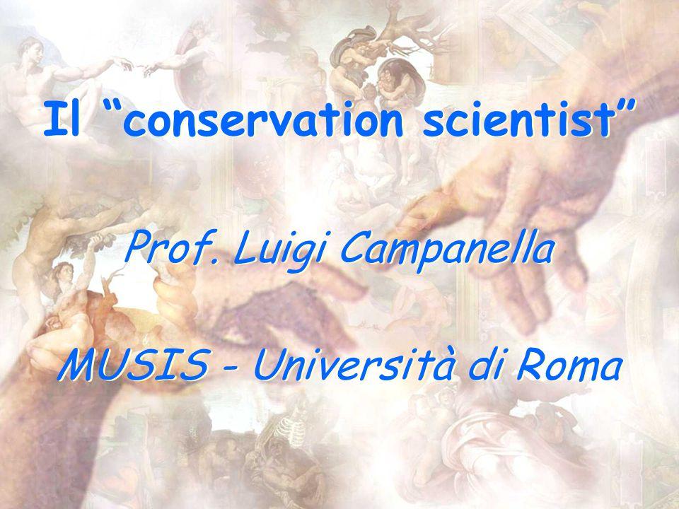 Il conservation scientist Prof. Luigi Campanella MUSIS - Università di Roma Prof.