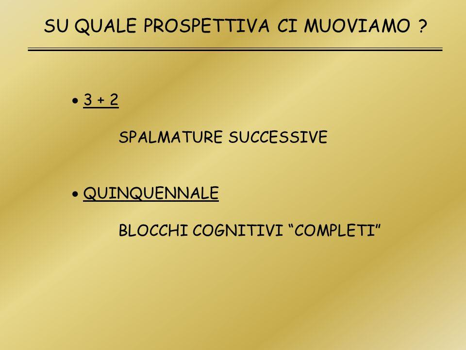 SU QUALE PROSPETTIVA CI MUOVIAMO ? 3 + 2 SPALMATURE SUCCESSIVE QUINQUENNALE BLOCCHI COGNITIVI COMPLETI
