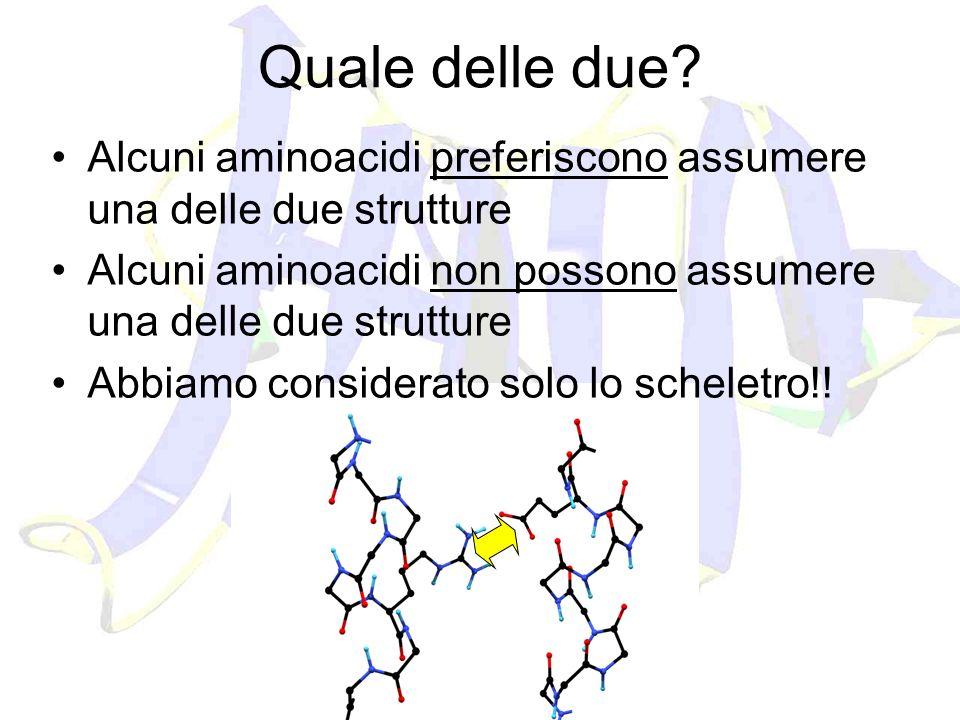 Quale delle due? Alcuni aminoacidi preferiscono assumere una delle due strutture Alcuni aminoacidi non possono assumere una delle due strutture Abbiam