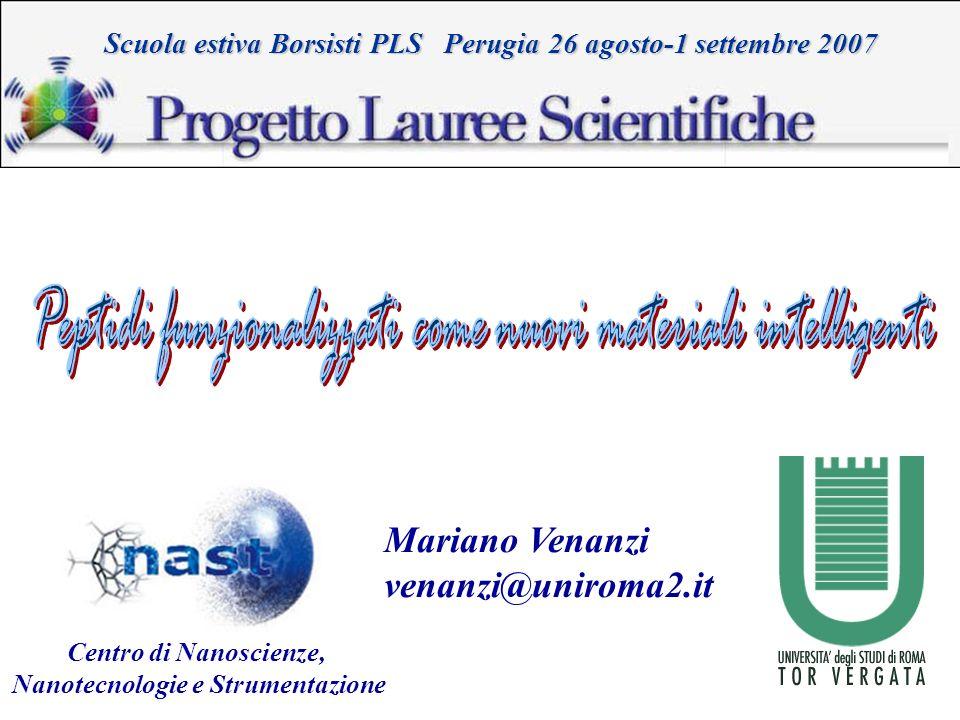 Mariano Venanzi venanzi@uniroma2.it Scuola estiva Borsisti PLS Perugia 26 agosto-1 settembre 2007 Centro di Nanoscienze, Nanotecnologie e Strumentazio