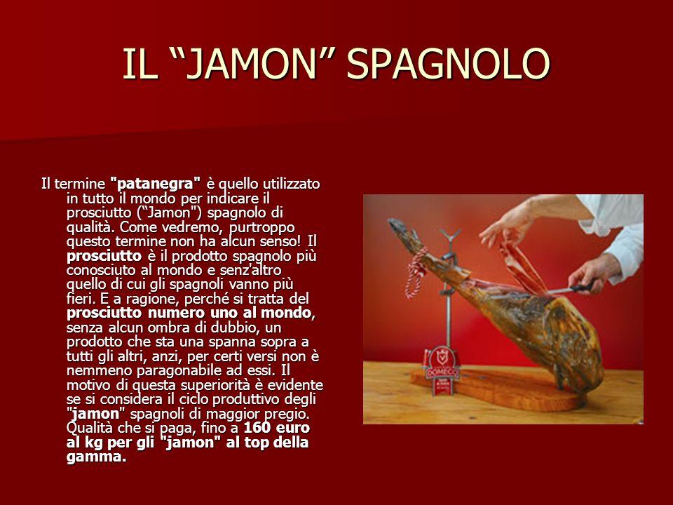 IL JAMON SPAGNOLO Il termine patanegra è quello utilizzato in tutto il mondo per indicare il prosciutto (Jamon ) spagnolo di qualità.
