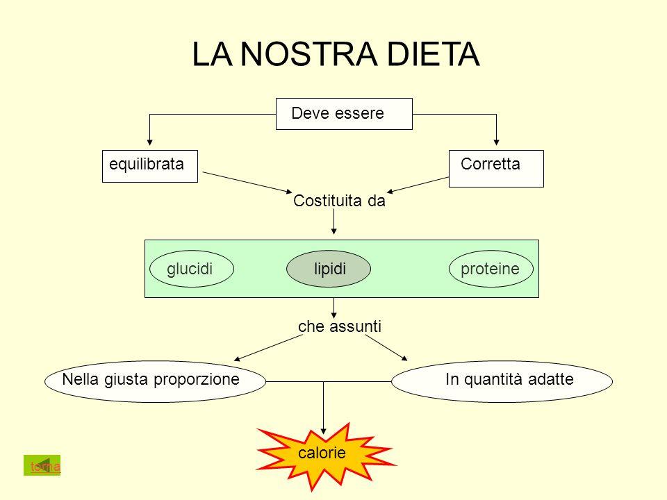 LA NOSTRA DIETA Deve essere equilibrataCorretta Costituita da glucidilipidiproteine che assunti Nella giusta proporzioneIn quantità adatte calorie torna