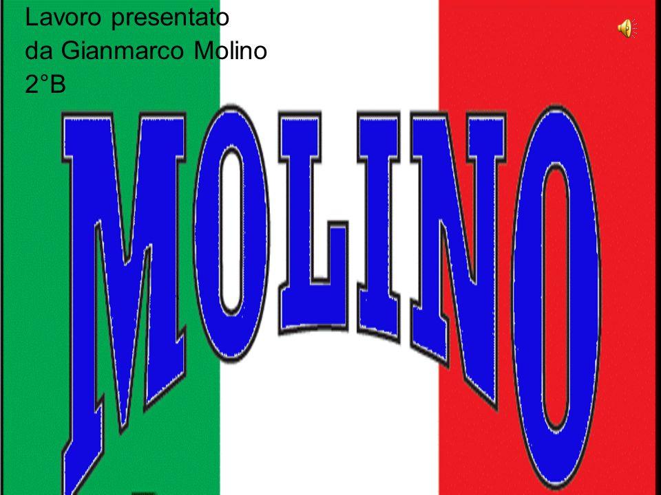 Lavoro presentato da Gianmarco Molino 2°B