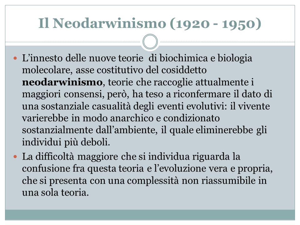 Il Neodarwinismo (1920 - 1950) Linnesto delle nuove teorie di biochimica e biologia molecolare, asse costitutivo del cosiddetto neodarwinismo, teorie