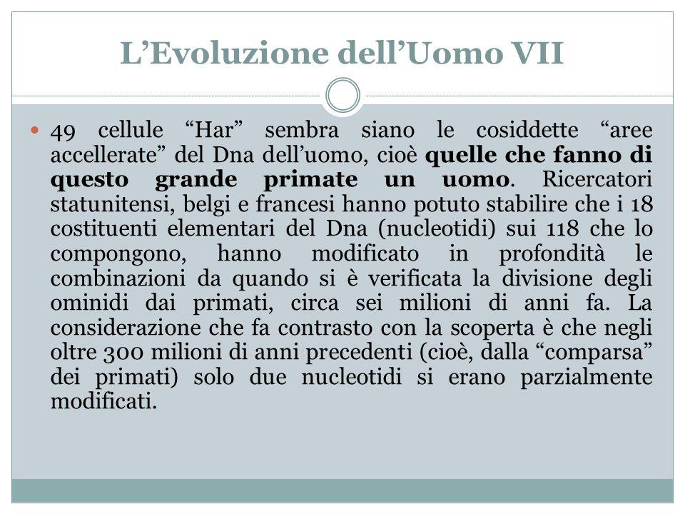 LEvoluzione dellUomo VII 49 cellule Har sembra siano le cosiddette aree accellerate del Dna delluomo, cioè quelle che fanno di questo grande primate u
