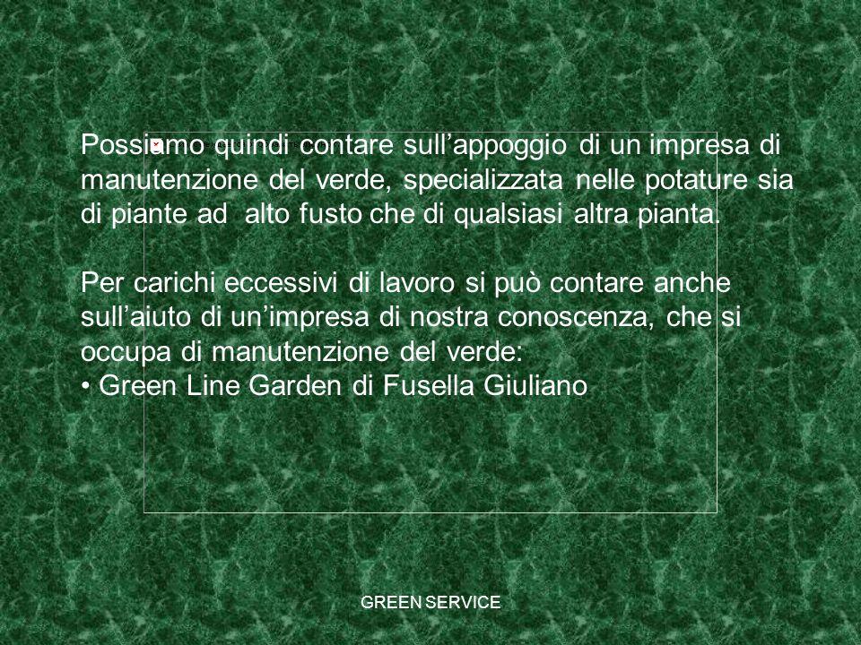 GREEN SERVICE Possiamo quindi contare sullappoggio di un impresa di manutenzione del verde, specializzata nelle potature sia di piante ad alto fusto c