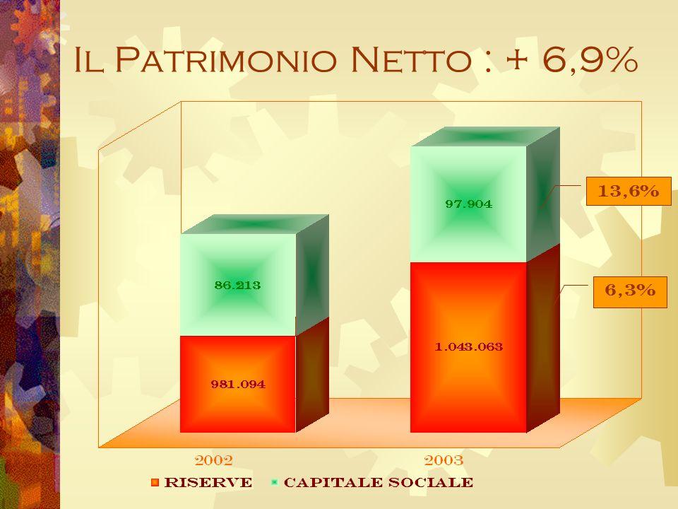 Il Patrimonio Netto : + 6,9% 6,3% 13,6%