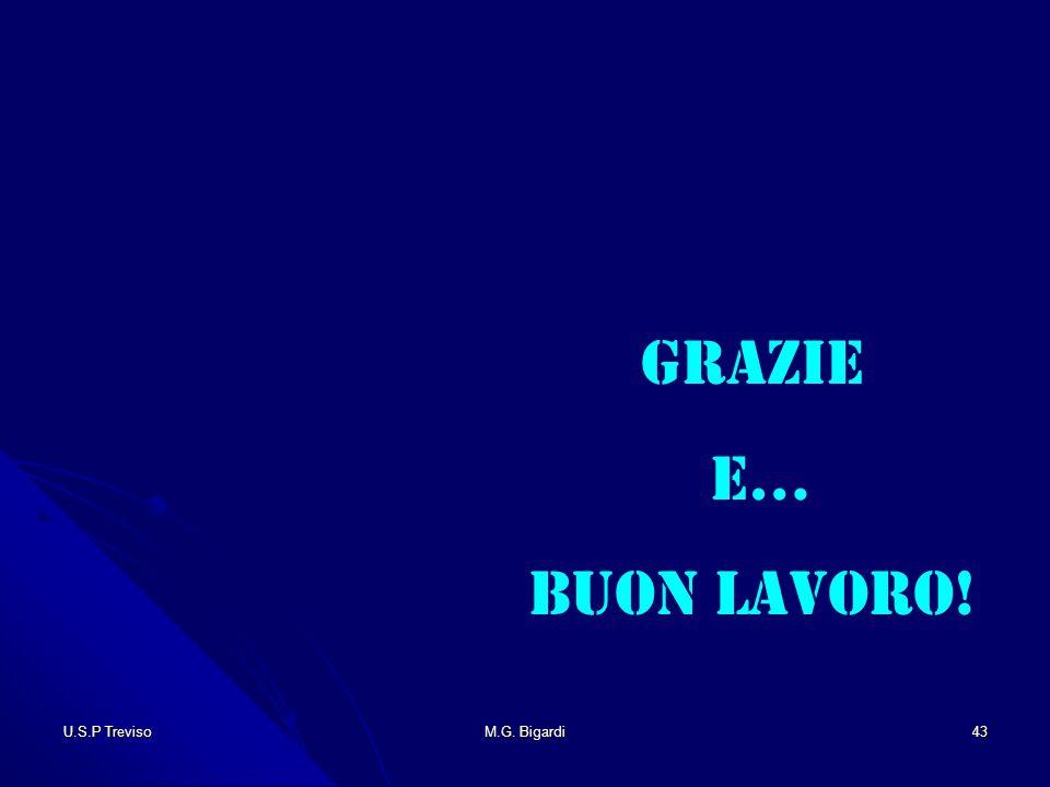 U.S.P TrevisoM.G. Bigardi43 Grazie e… Buon Lavoro!