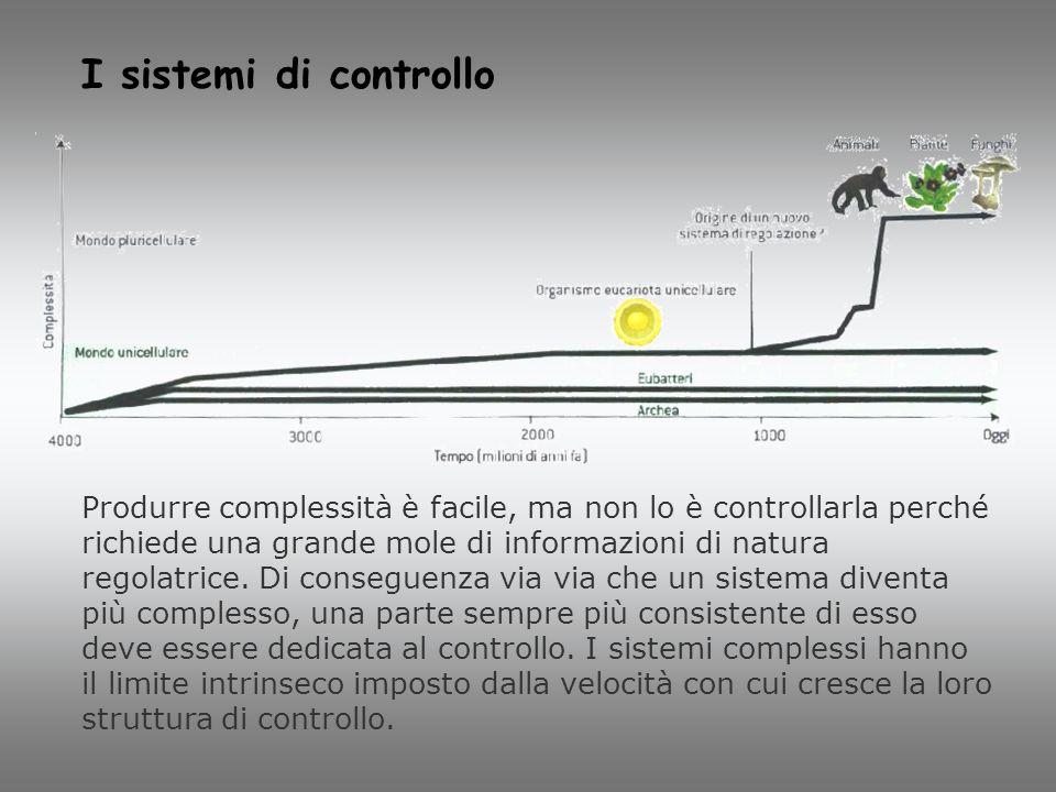 I sistemi di controllo Produrre complessità è facile, ma non lo è controllarla perché richiede una grande mole di informazioni di natura regolatrice.