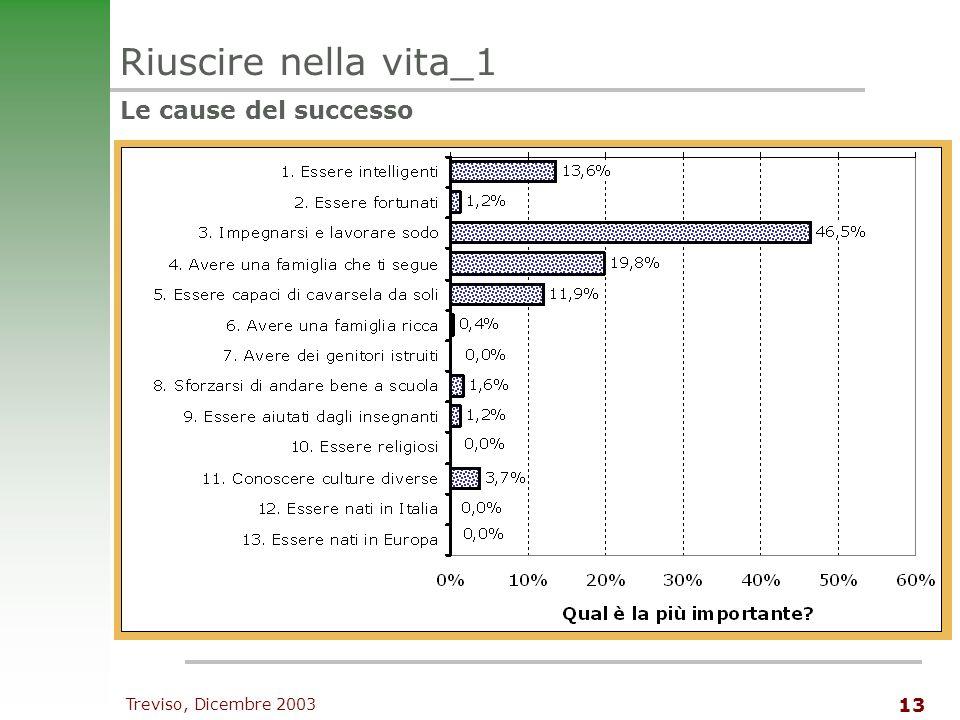 Treviso, Dicembre 2003 13 Riuscire nella vita_1 Le cause del successo