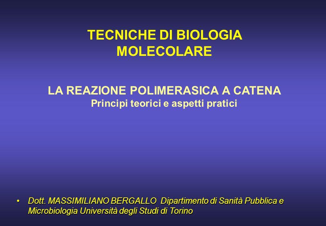 TECNICHE DI BIOLOGIA MOLECOLARE LA REAZIONE POLIMERASICA A CATENA Principi teorici e aspetti pratici Dott. MASSIMILIANO BERGALLO Dipartimento di Sanit