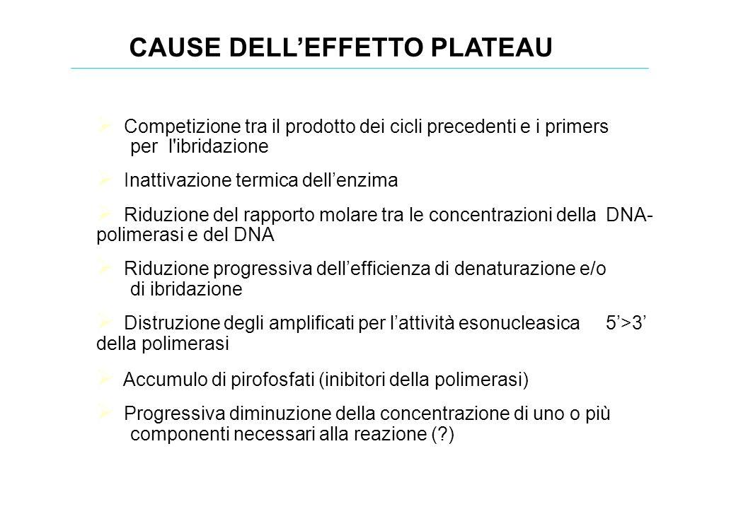 Competizione tra il prodotto dei cicli precedenti e i primers per l'ibridazione Inattivazione termica dellenzima Riduzione del rapporto molare tra le