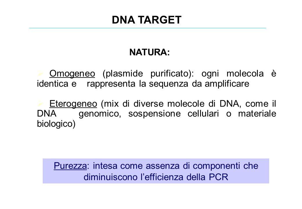 DNA TARGET NATURA: Omogeneo (plasmide purificato): ogni molecola è identica e rappresenta la sequenza da amplificare Eterogeneo (mix di diverse moleco