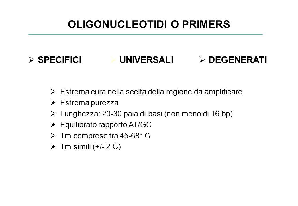 Estrema cura nella scelta della regione da amplificare Estrema purezza Lunghezza: 20-30 paia di basi (non meno di 16 bp) Equilibrato rapporto AT/GC Tm