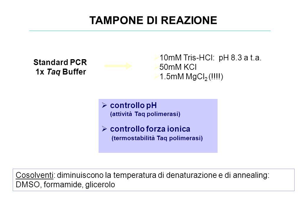 TAMPONE DI REAZIONE controllo pH (attività Taq polimerasi) controllo forza ionica …. (termostabilità Taq polimerasi) Cosolventi: diminuiscono la tempe