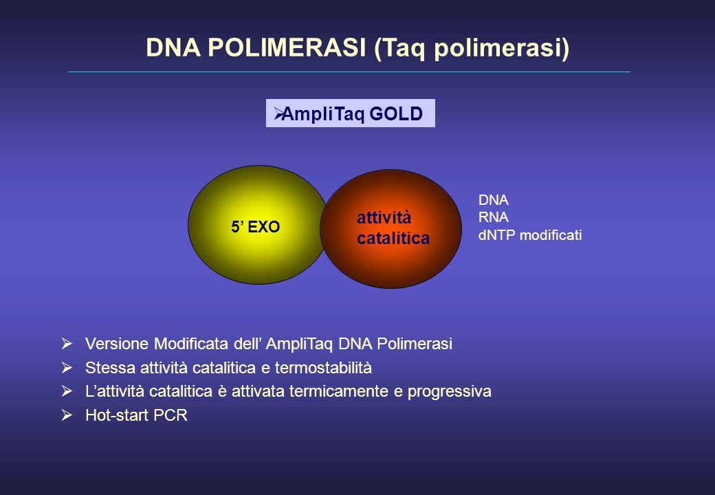 Versione Modificata dell AmpliTaq DNA Polimerasi Stessa attività catalitica e termostabilità Lattività catalitica è attivata termicamente e progressiv