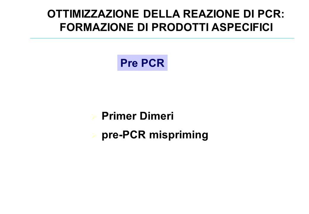 Primer Dimeri pre-PCR mispriming Pre PCR OTTIMIZZAZIONE DELLA REAZIONE DI PCR: FORMAZIONE DI PRODOTTI ASPECIFICI