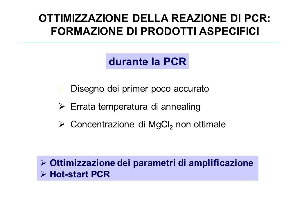 Disegno dei primer poco accurato Errata temperatura di annealing Concentrazione di MgCl 2 non ottimale OTTIMIZZAZIONE DELLA REAZIONE DI PCR: FORMAZION