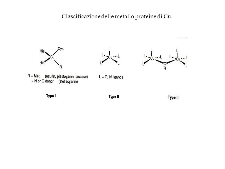 Classificazione delle metallo proteine di Cu