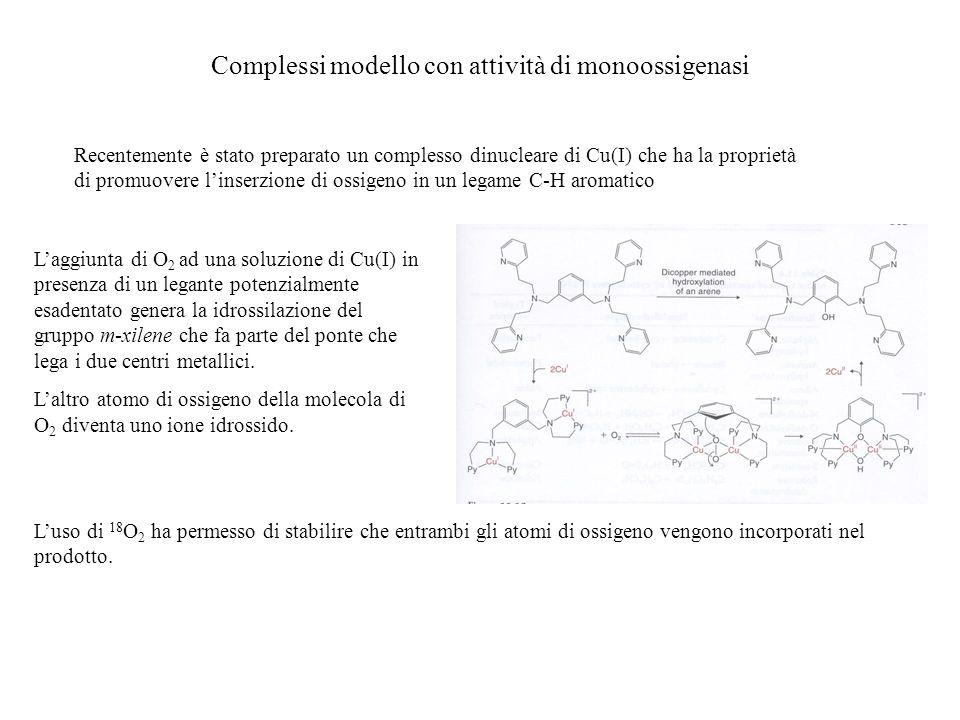 Complessi modello con attività di monoossigenasi Recentemente è stato preparato un complesso dinucleare di Cu(I) che ha la proprietà di promuovere lin