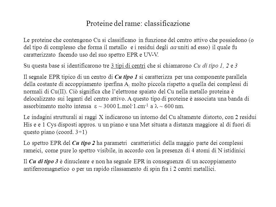 Proteine del rame: classificazione Le proteine che contengono Cu si classificano in funzione del centro attivo che possiedono (o del tipo di complesso